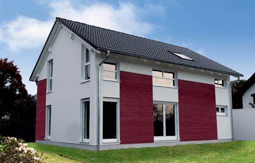 Einfamilienhaus Schwanau 2